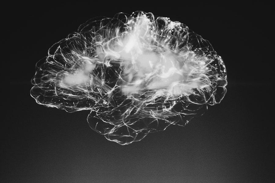 Plasticitat neuronal