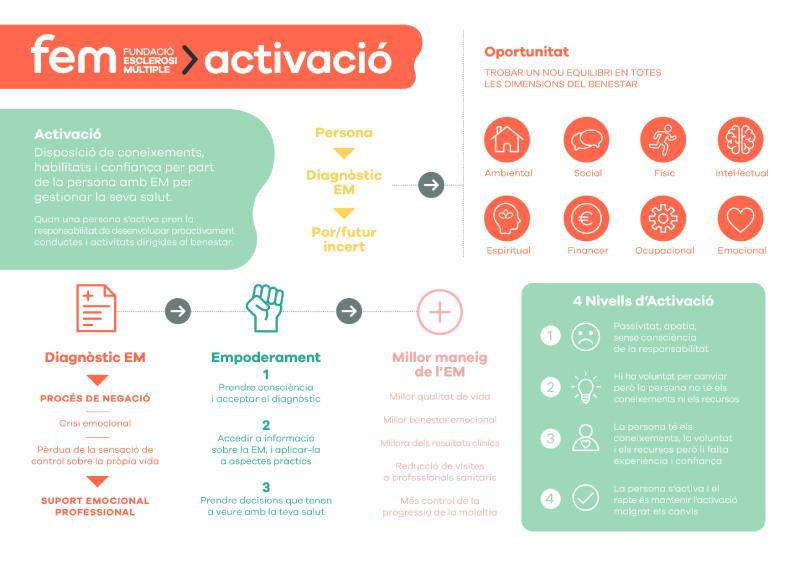 Programa Activació de la fem